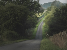 Country Lane 1